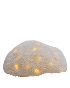 Radiant Coral Lamp - White